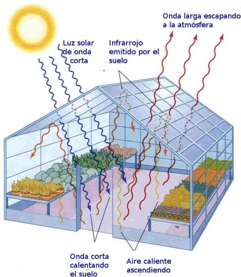 greenhousem